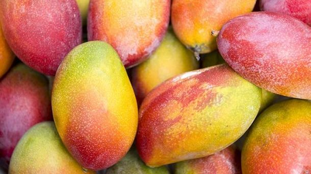 How-To-Select-And-Store-Mangoes